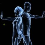 Sistema immunitario BodyFly